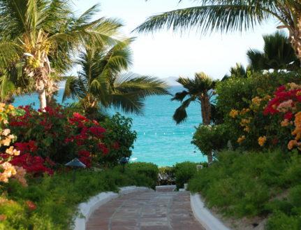 Resort Cap Juluca